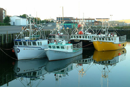 Four docked fishing boats