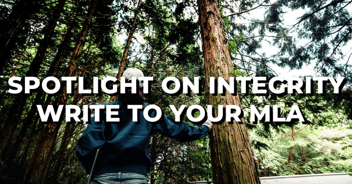 Spotlight on Integrity: Write to your MLA